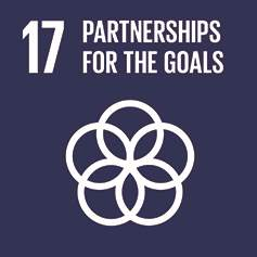 SDG 17 - Parterships for the Goals